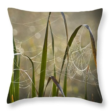 Tangled Highway Throw Pillow by Carolyn Marshall
