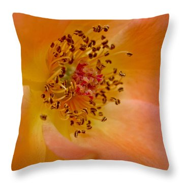 Tango Throw Pillow by Gwyn Newcombe