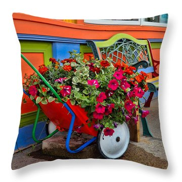 Tannersville Color Blast Throw Pillow