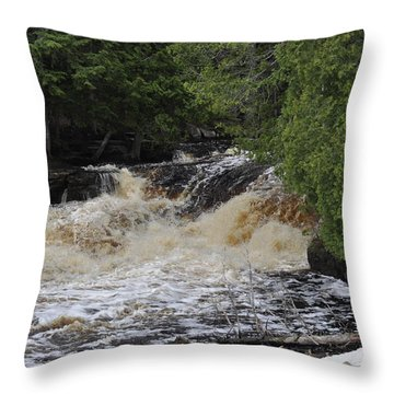 Tannic Waters Throw Pillow