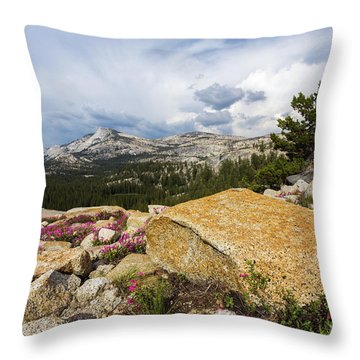 Tanya Overlook  Throw Pillow