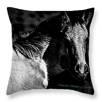 Taos Pony In B-w Throw Pillow