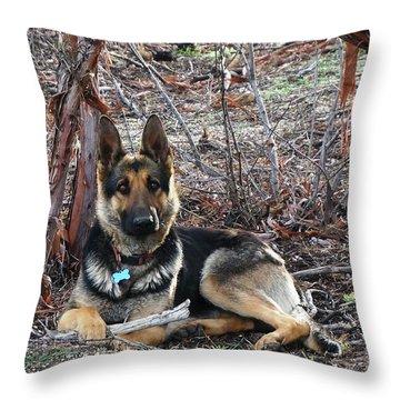 Throw Pillow featuring the photograph Tara by Julia Ivanovna Willhite