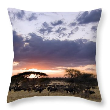 Tarangire Sunset Throw Pillow by Adam Romanowicz