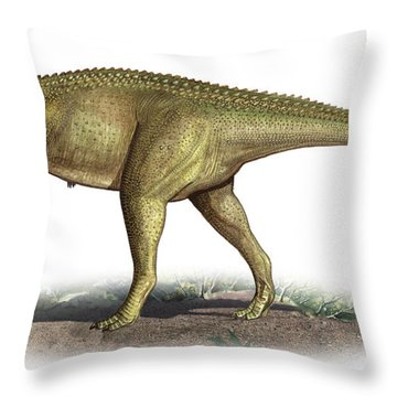 Tarascosaurus Salluvicus, A Prehistoric Throw Pillow by Sergey Krasovskiy