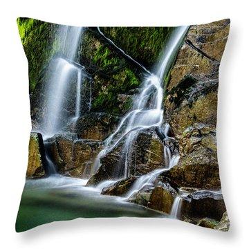 Tarcento's Cascade 2 Throw Pillow