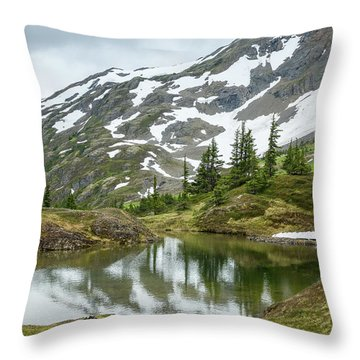 Tarns Of Nagoon 209 Throw Pillow