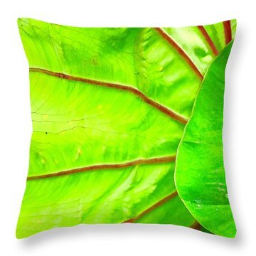Taro Leaf Close Up In Green Throw Pillow