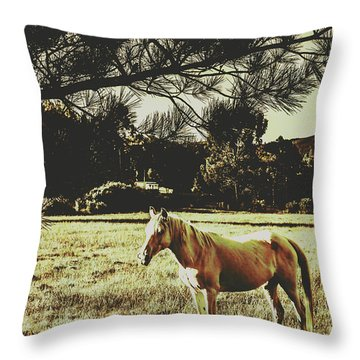 Tasmanian Rural Farm Horse Throw Pillow