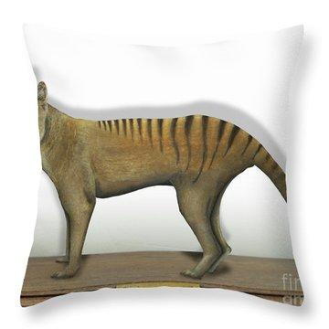 Tasmanian Tiger-thylacinus Cynocephalus-tasmanian Wolf-lobo De Tasmania-tasmanian Loup-beutelwolf    Throw Pillow