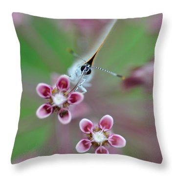 Taste Throw Pillow
