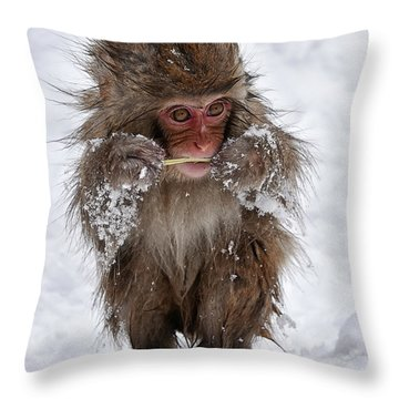 Tasty? Throw Pillow