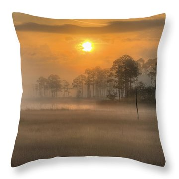 Tate's Hell State Forest Throw Pillow