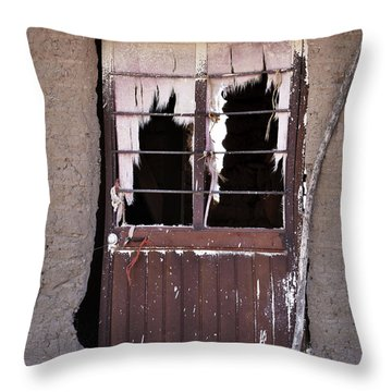 Tattered Curtains Throw Pillow