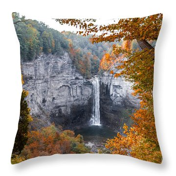 Throw Pillow featuring the photograph Taughannock Autumn by William Norton