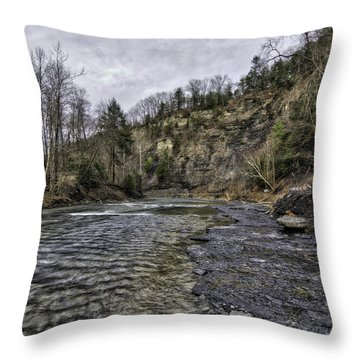 Taughannock Creek Throw Pillow