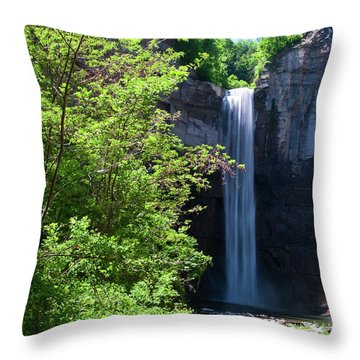 Taughannock Falls 0466 Throw Pillow