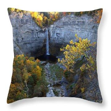Taughannock Falls Throw Pillow by Vilas Malankar
