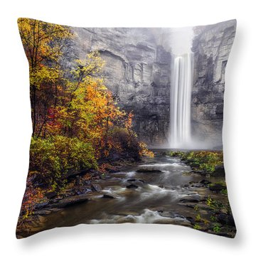 Throw Pillow featuring the photograph Taughannock Fog by Mark Papke