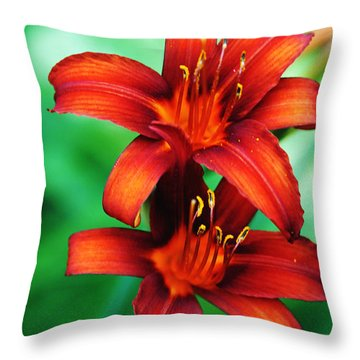 Tawny Beauty Throw Pillow by Debbie Oppermann