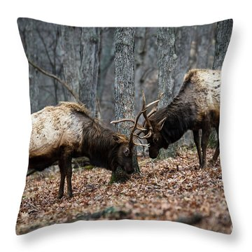 Throw Pillow featuring the photograph Teaching by Andrea Silies