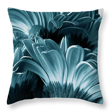 Teal Gerberas Throw Pillow