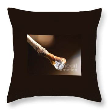 Throw Pillow featuring the photograph Tearfulness by Jolanta Anna Karolska