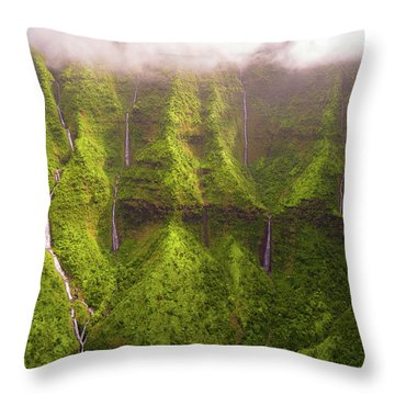 Tears Of Waialeale Throw Pillow