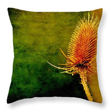 Throw Pillow featuring the photograph Teasel Head by Dariusz Gudowicz