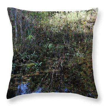Teeming With Life Throw Pillow by Suzanne Gaff