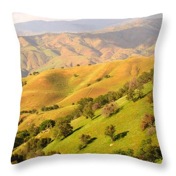 Tehachapi Topography Throw Pillow