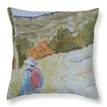 Tejas Trail Doodle Throw Pillow