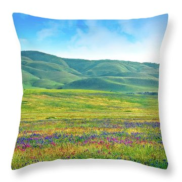 Tejon Ranch Wildflowers Throw Pillow