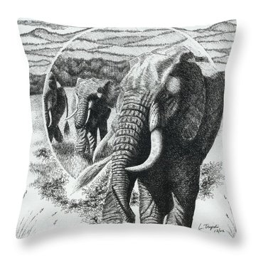 Telephoto Throw Pillow by Lawrence Tripoli