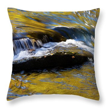 Throw Pillow featuring the photograph Tellico River - D010004 by Daniel Dempster