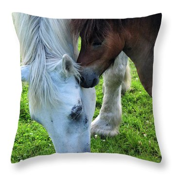 Telling Secrets Throw Pillow by Mike Martin