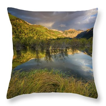 Telluride Valley Floor Throw Pillow