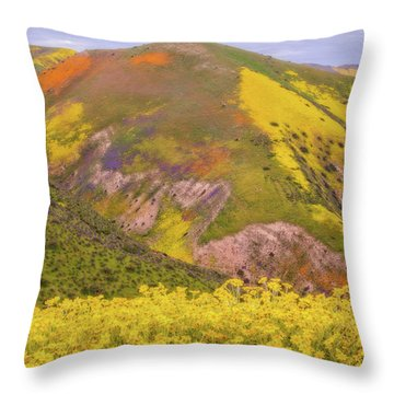 Throw Pillow featuring the photograph Temblor Range Color by Marc Crumpler