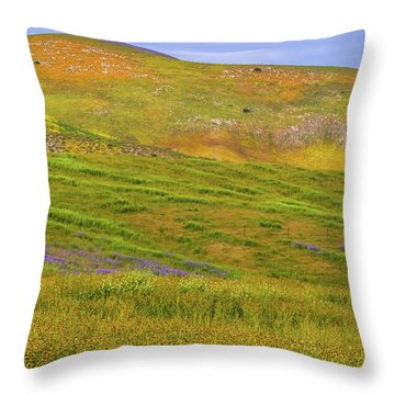 Throw Pillow featuring the photograph Temblor Range Spring Color by Marc Crumpler