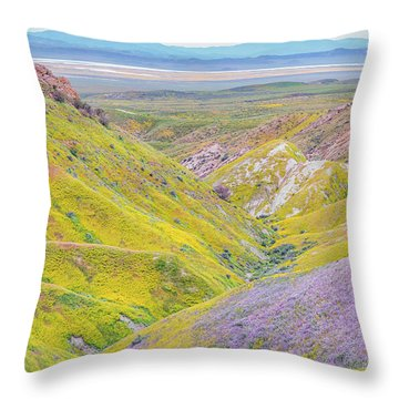 Throw Pillow featuring the photograph Temblor Range View To Caliente Range by Marc Crumpler