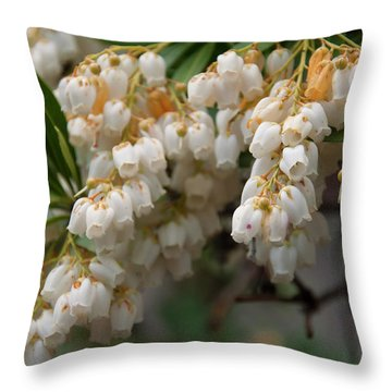 Throw Pillow featuring the photograph Temple Bells Andromedia by Chris Flees