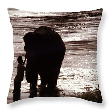 Temple Elephant Being Bathed Down At Throw Pillow
