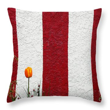 Throw Pillow featuring the photograph Temple Wall by Ethna Gillespie