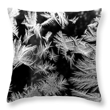 Temporal Treasures Throw Pillow