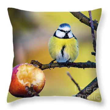 Throw Pillow featuring the photograph Tempting by Torbjorn Swenelius