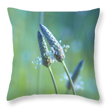 Tender Lovers Throw Pillow by Aimelle