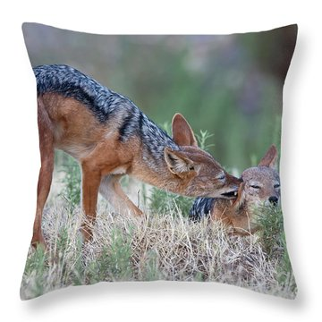 Tender Loving Care Throw Pillow