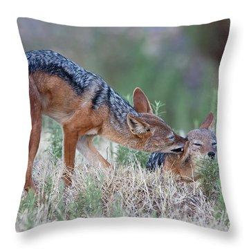 Tender Loving Care Throw Pillow