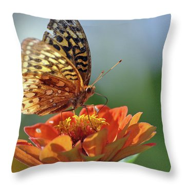 Throw Pillow featuring the photograph Tenderness by Glenn Gordon