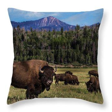 Tending The Herd Throw Pillow